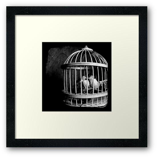 Love Birds by Kitsmumma