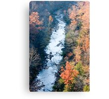 Water Creek Canyon Canvas Print