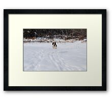 Here I come... Framed Print