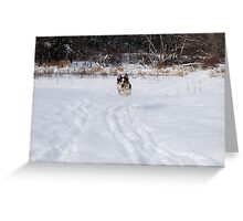 Here I come... Greeting Card