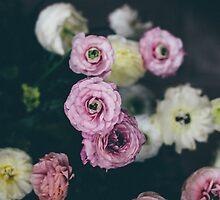 Dark Romance by anniephoto