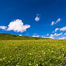 alpine meadow by peterwey
