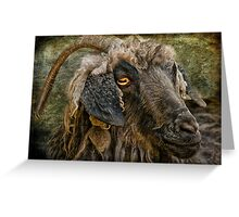 The Year Of The Goat Greeting Card