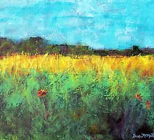 Amber Fields by Sue McMillan