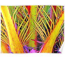 autumn palmtree Poster