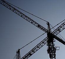 cranes by tomo12