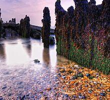 Walberswick Beach Suffolk 8. by Wayne Bradshaw
