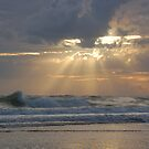 ocean beams by dc witmer