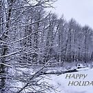 Christmas Card by NancyC
