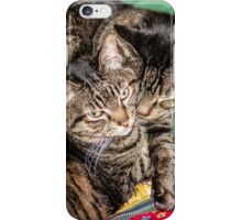 Two Cats Snuggled Together iPhone Case/Skin
