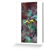 Butter flower  Greeting Card