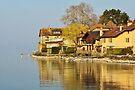 Houses along Geneva lake by Patrick Morand