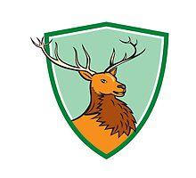 Red Stag Deer Head Shield Cartoon by patrimonio
