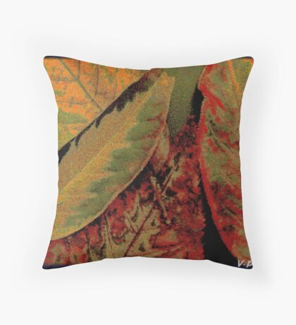 flawed but beautiful Throw Pillow
