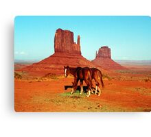 Horse Mittens Canvas Print