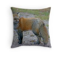 In No Hurry Throw Pillow