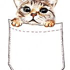 Pocket cat by AnnaShell