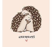 Hedgehugs Photographic Print