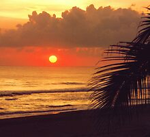 Mexican Sunset  by clizzio