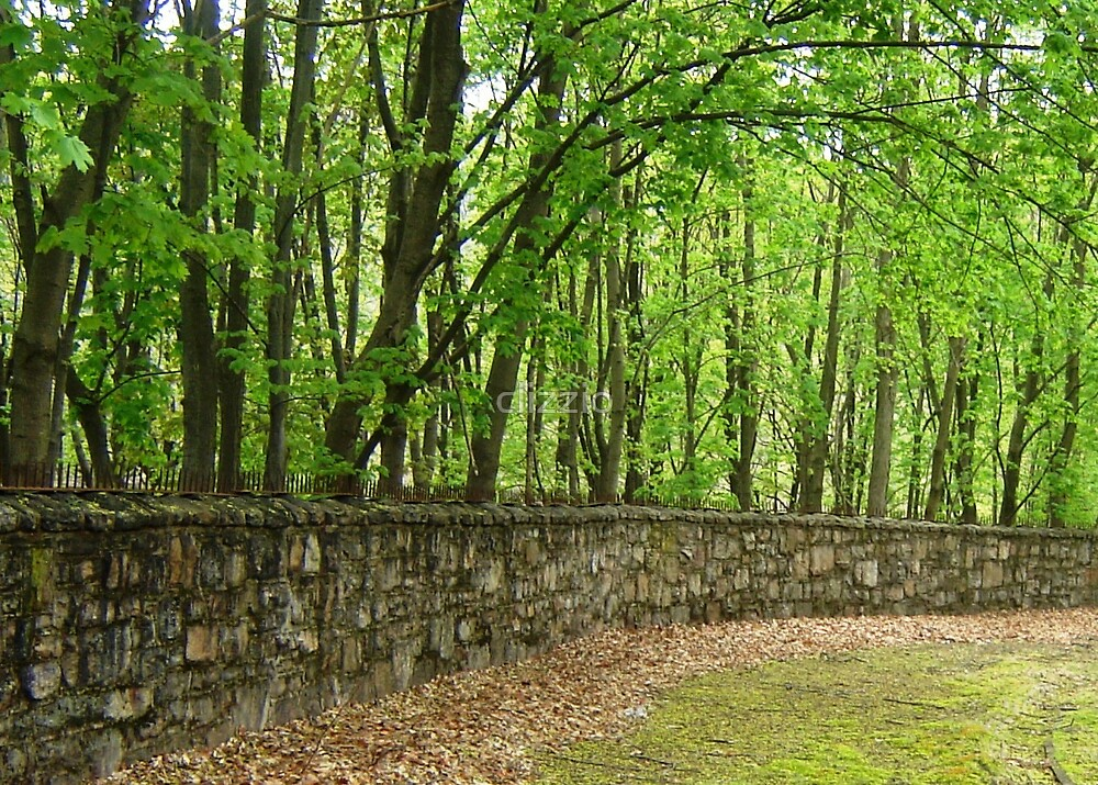 Stone Wall Jim Thorpe PA by clizzio