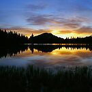 Sprague Lake Dawn Reflections by Stephen Vecchiotti