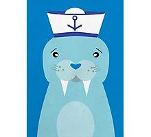 Hello Sailor Photographic Print