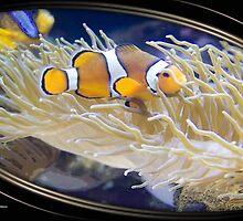 sea life by arteology