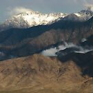 Out My Back Door...The Virgin Mountains by Susan Bergstrom
