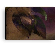 Peak of Autumn Canvas Print