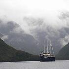 Fiordland Navigator on Doubtful Sound, NZ by kbend