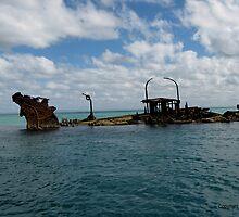 The wrecks at Moreton Island, Queensland. #1 by CazzP