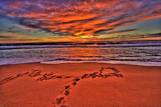Footprints In The Sand - Newport Beach - The HDR Series by Philip Johnson