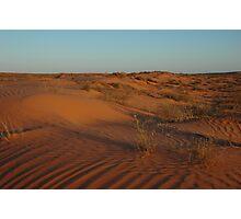 Simpson Desert - evening light Photographic Print