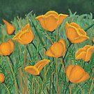Poppies by Karirose