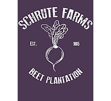 Schrute Beet Plantation Photographic Print