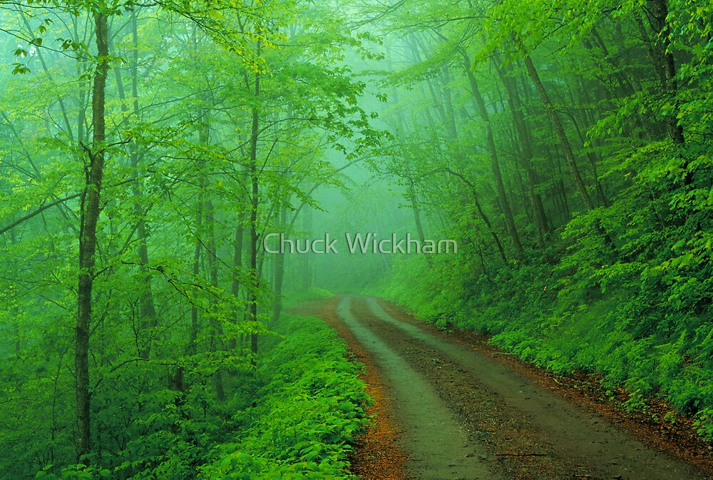 Balsam Mountain Road By Chuck Wickham Redbubble