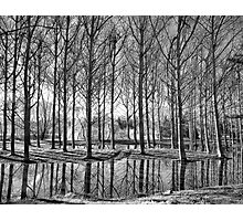 Light & Reflection Photographic Print