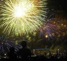 Fireworks - Multi-colored Spiders and Comets by Joy Leong-Danen