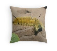 Dagger Moth Caterpillar Throw Pillow