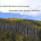 God's Beauty Is Still Here by NancyC