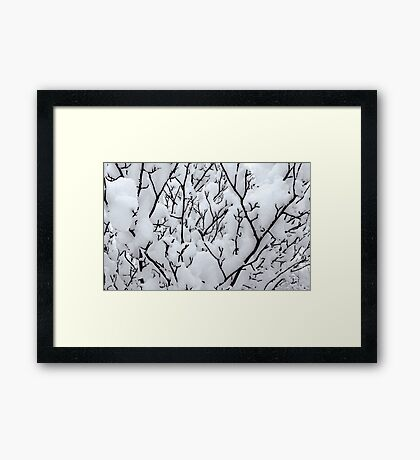 Untitled.00172 Framed Print