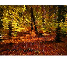 Autumn Glow Blocks Photographic Print