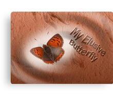 Elusive Butterfly Canvas Print