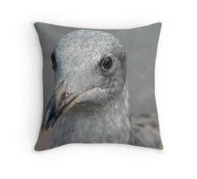 Juvenile Gull Throw Pillow