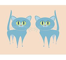 A PAIR OF PURRING CATS Photographic Print