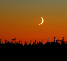 fingernail moon by cmcelhaney