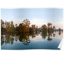 Cypress Reflections Poster