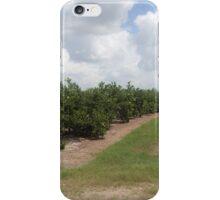 The Citrus Grove iPhone Case/Skin