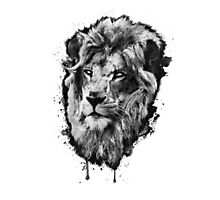 First Lion - White Eyes Photographic Print