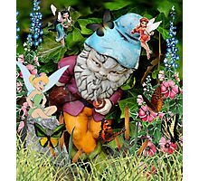 Naughty Gnome and Friends Photographic Print